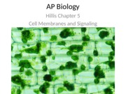 ch 5.5-5.6 cell membranes and signaling ppt 2012-2013 .pptx