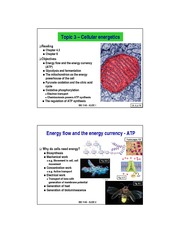 Topic 3 – Cellular energetics 2014 to post