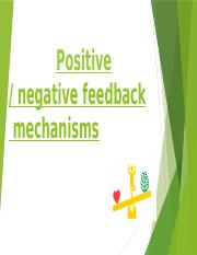 Feedback-Mechanism-.pptx
