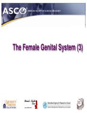 The Female Genital System (3)s