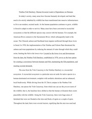 Nimbus Fish Hatchery Essay#2