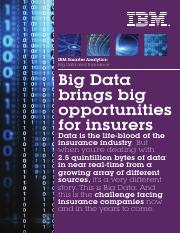 IBM_BAO_Big_Data_Insurance_WEB.pdf