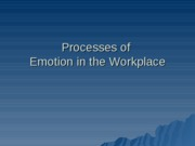 Processes of Emotion in the Workplace 2009