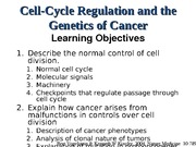 Lecture 15 Cell Cycle and Cancer Notes