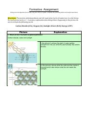 Ecology_Act._9_Formative_Assignment