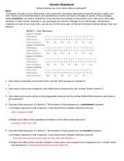 genetic_mutations_pogil.pdf - Genetic Mutations What ...