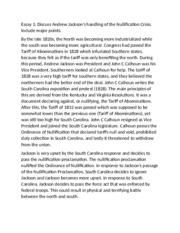 Andrew jackson essay
