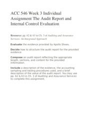 ACC 546 Week 3 Individual Assignment The Audit Report and Internal Control Evaluation