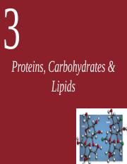 Ch03 (Proteins, Carbohydrates & Lipids)