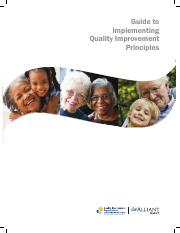 Guide to Implementing Quality Iimprovement Principles