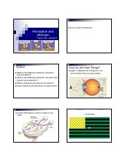 P102_Lab_ 3_Perception_and_Attention_PowerPoint_Slides.pdf