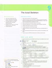 The Axial Skeleton.pdf