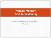 4 Working Memory Short Term Memory