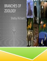 Branches of Zoology .pptx