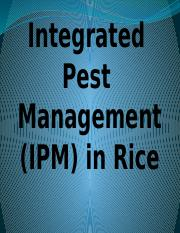 Integrated  Pest  Management (IPM) in Rice mark bryan cara.pptx