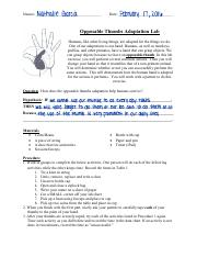 Opposable Thumbs Adaptation Lab.pdf