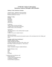 subsistence_econ_outline7