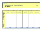 SLS, Inc Workpapers 2013 Template.xlsx