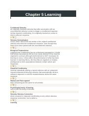 Chapter 5 Learning.docx