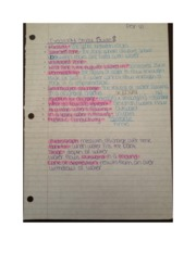 Study Guide Fractures and Minerals