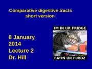 lec 2 comparative abbreviated