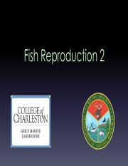 12 lecture reproduction 2 copy