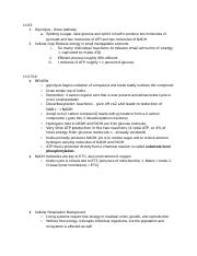 Photosynthesis and Cellular Respiration Notes.docx