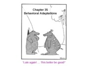 18-ch35-behavior