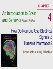 Lecture 6, Sep 27 Electrical Transmission in CNS Ch4