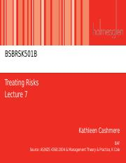 Lecture 7 - Treating Risks