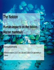 biology lecture 9 ocean impacts