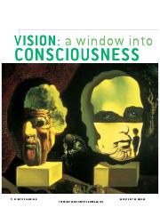 Vision_A_Window_in_Consciousness.pdf