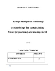 Methodology for sustainability strategic planning and management