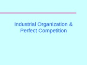 IO and perfect competition_Presentation