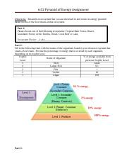06.02 Pyramid of Energy and Numbers.rtf