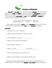 Chloroplasts and Mitochondria Coloring Worksheets.doc
