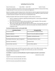 Individual Care Plan Template hmwrk.docx