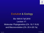 Lec 17 Molecular Phylogeny and Macroevolution