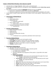 Skeletal-muscle-lab-notes-3
