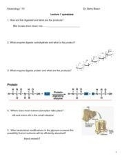Lecture 7 Qs Absorption-1