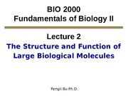 Lecture_2_Large Biological Molecules_I