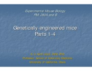 Experimental_Mouse_Biology,_Genetic._Engin._Mice_Parts_1-4