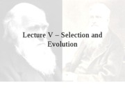 Lecture V - Selection and Evolution