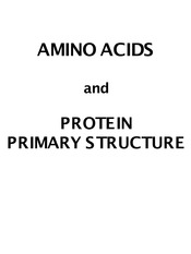 4. Amino Acids and Protein Primary Structure