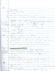 organic chemistry review 10-4-2010