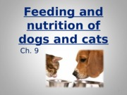 Ch._9_feeding_and_nutrition_of_dogs_and_cats_part_1.ppt