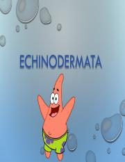 Week 7 - Echinodermata.pdf