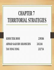 Chapter7 Territorial Strategies.pptx