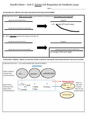 Caeden_Smith_-_Doodle_Sheet_Unit_3_Online_Cell_Resp_Feedback_Loops.pdf
