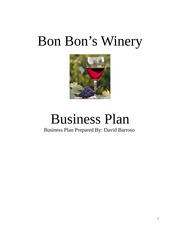 Final Business Plan